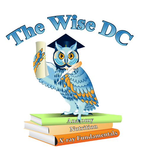 The Wise DC